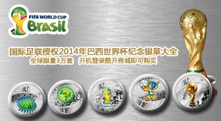 2014巴西世界杯官方纪念品:OTT TV新媒体整合营销