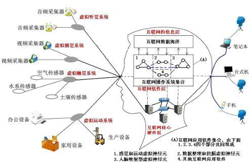 我们通过对互联网应用和结构的分析,发现互联网与人类的大脑结构有着