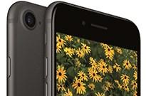 消费者移情iPhone 8 苹果被迫削减iPhone 7订单