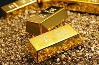 警惕网络黄金陷阱:半年骗109亿
