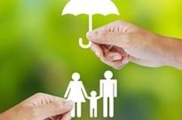 互联网风起 保险中介转型谋生