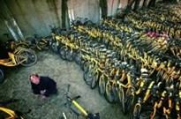 北京共享单车维修点近3000辆待修 多数系人为破坏