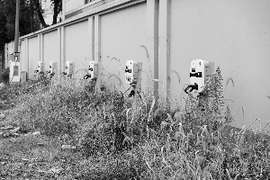 """充电桩数量仍在持续增加,只是大部分公用充电桩被闲置,成了""""僵尸桩""""。"""