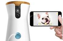 多款iPhone配件成为亚马逊Prime会员日畅销商品