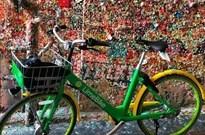 美国首个共享单车现在怎么样了?我们独家拿到了数据