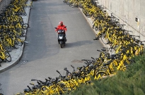 共享单车野蛮生长被叫停,月增40万辆总量已达235万