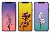 配iOS 11新壁纸!iPhone X定妆照曝光:这些新功能带感