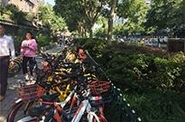 """杭州:""""国民素质""""终于配得上共享单车了"""