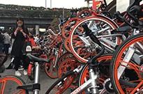 探访自行车第一镇:共享单车的单子不敢接