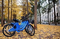 小蓝单车将被托管 创始人李刚称跑百家基金无人投钱