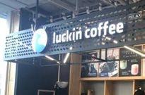 一线 | 瑞幸咖啡发公开信称遭遇星巴克不正当竞争
