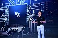 国产AI芯片遍地开花,可是否会沦为