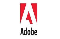 Adobe中国特供版Flash默认搜集用户隐私