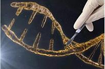 基因编辑婴儿:撕开荒诞世界的第一道口子
