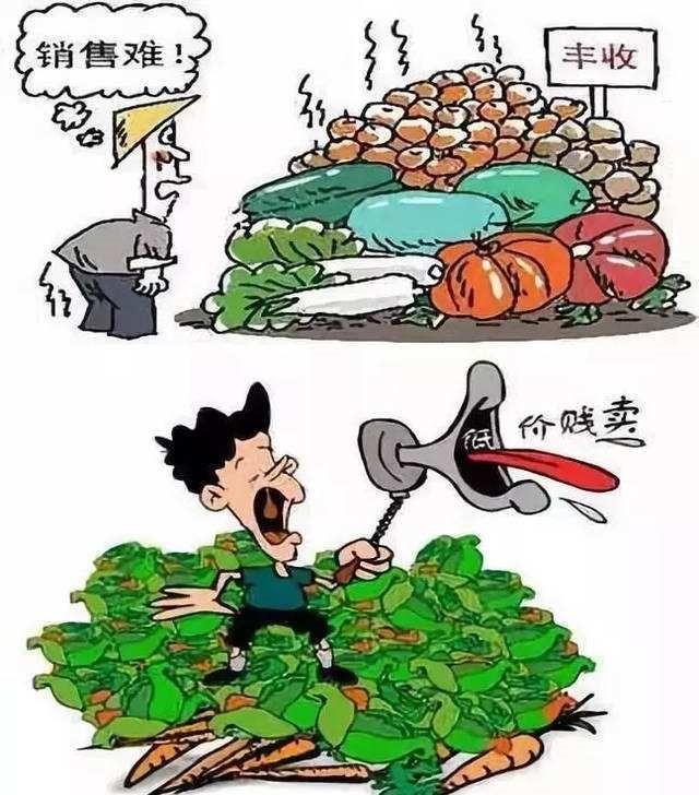 """农产品交易怪圈上演""""滞销,卖难"""