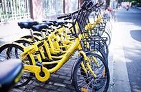 ofo与凤凰自行车和解:剩余货款可分期付
