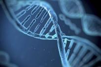 科技部回应基因编辑婴儿:全面暂停相关人员科技活动