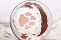 星巴克猫爪杯引热议 淘宝同款比比皆是真假难辨