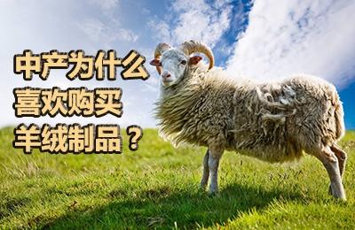 中产为什么喜欢购买羊绒制品?