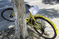 媒体调查:押金退不了借车也很难,小黄车去哪儿了