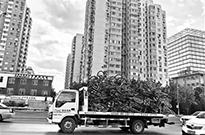 月平均活跃度不足50% 北京将全面清理废弃共享单车