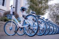 罚款5万!北京市对哈��单车违规投放实施惩罚