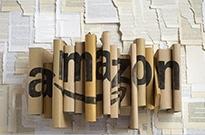 亚马逊败走 图书电商巨头四进三