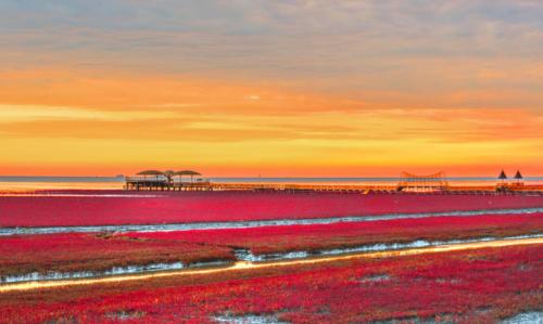 盘锦红海滩浪漫之行,感受热恋般的怦然心动
