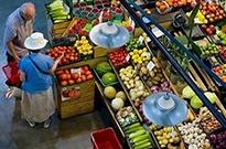 呆萝卜们的教训:不接地气的生鲜,互联网和资本都拯救不了