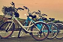 共享单车再现价格战 借疫情迎二春?