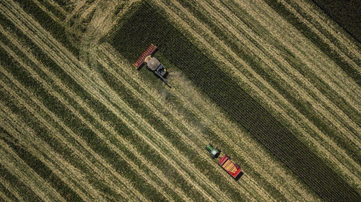害怕疫情导致食品危机,众多机构租卫星观察供应链
