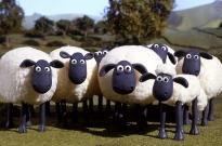 """羊毛客恶意""""薅""""电商 黑灰产业链""""失控""""引关注"""