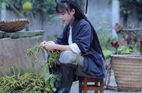 央视网评:薇娅、李子柒当选青联委员引争议 百花齐放才是春