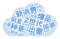 2021微博针不戳品牌V力峰会 | 新消费趋势,针不戳爆品榜,品牌社交资产全方位解读!