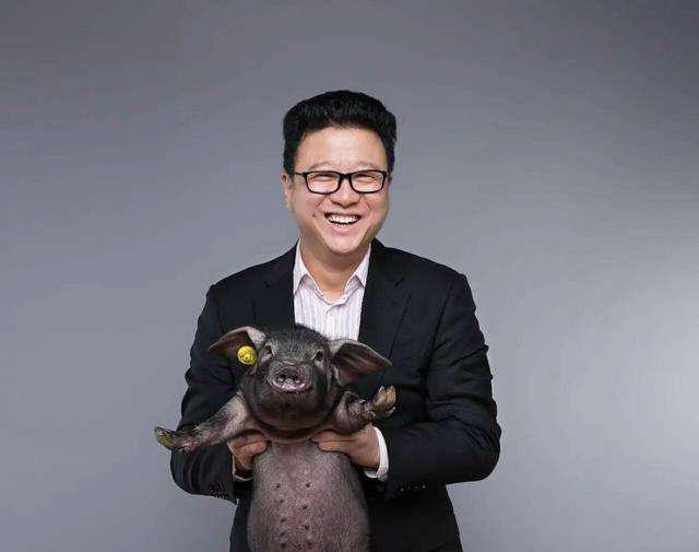 丁磊养猪1.jpg